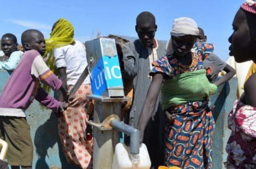 Article : Cameroun – Touroua: sur les traces des déplacés internes de Boko Haram