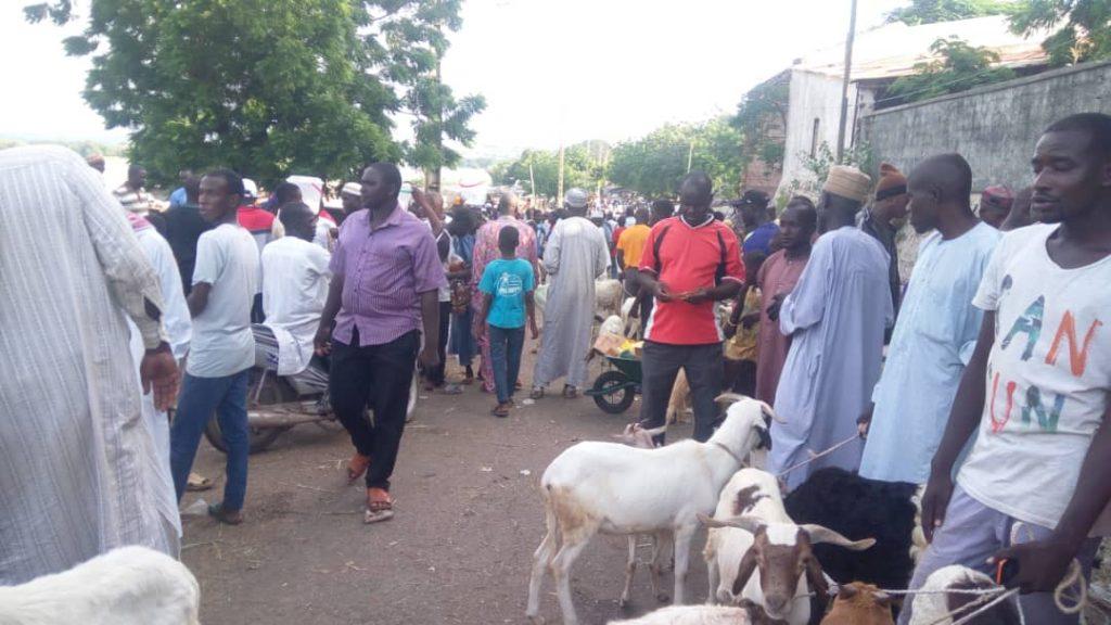 l'entrée du marché au bétail
